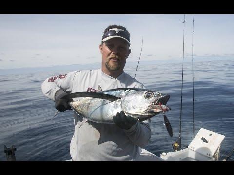 Oregon Coast Albacore Fishing With Live Bait & Iron