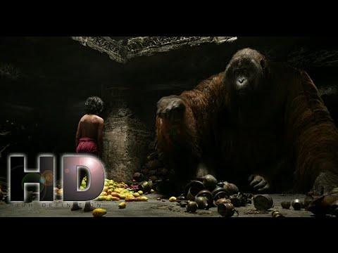 Download The Jungle Book (2016) - Mowgli Meet Big Giant Monkey Scene | Hollywood | MovieClips In Hindi HD
