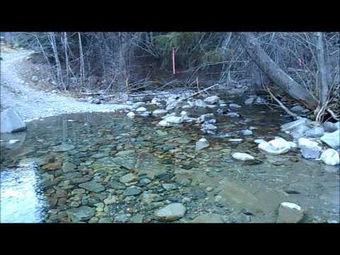Whipsaw Creek Placer Gold Claim
