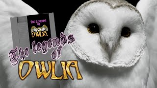 Daria Reviews The Legends of Owlia - A New NES Homebrew Adventure Game