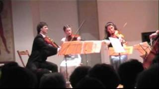 Mozart String Quintet No. 4 in G minor, K. 516 - I. Allegro