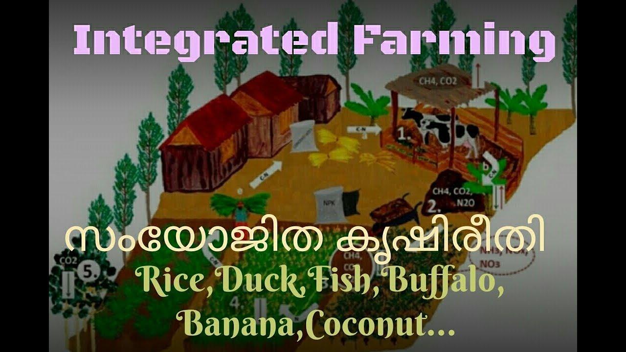 Integrated Farming | �...