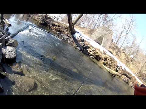 Fly Fishing Yellow Breeches Creek