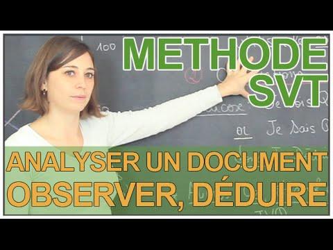 Analyser un document : observer et déduire - SVT - Les Bons Profs