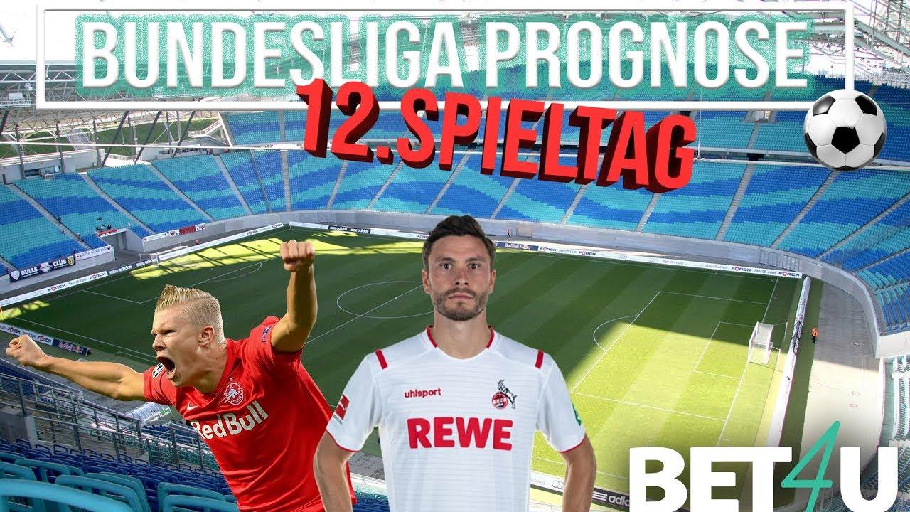 Bundesliga Tipps 15 Spieltag