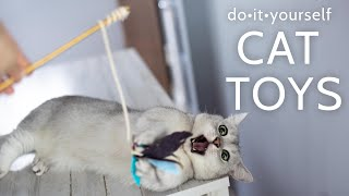 How to make Cheap DIY Cat Toys