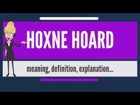 What is HOXNE HOARD? What does HOXNE HOARD mean? HOXNE HOARD meaning, definition & explanation