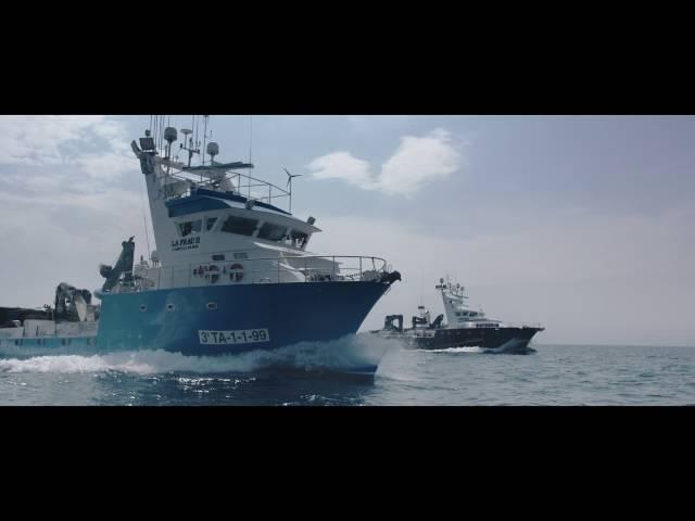 Mar de Sueños, una vida entre atunes rojos