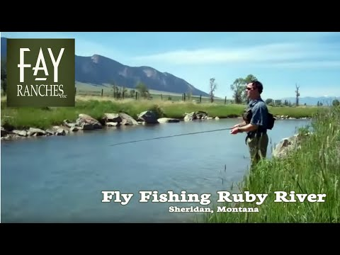 Fly Fishing On The Ruby River | Sheridan, Montana