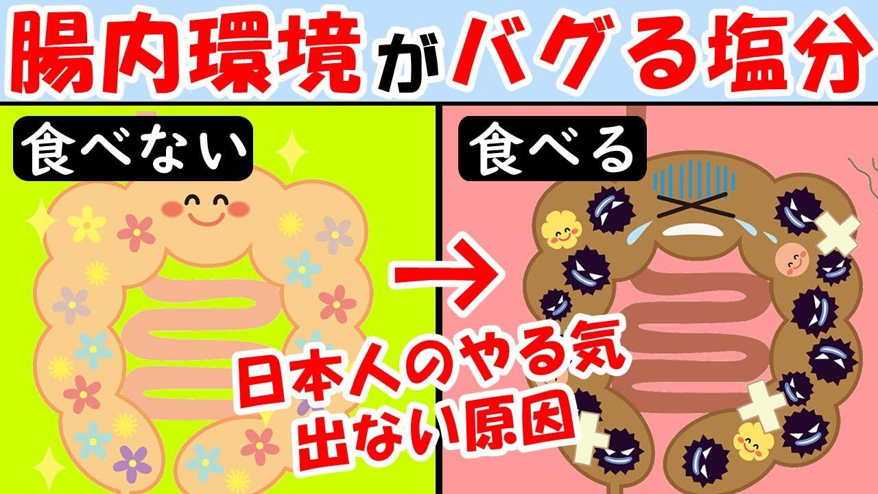 日本人のやる気が出ない無気力の原因!腸内環境がバグって体中炎症だらけになる塩分がヤバい【アレルギー|おなら】