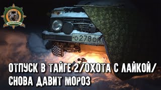 Отпуск в тайге с Сергеем Таежным 2/Охота на глухаря по лункам/Натаск собаки
