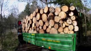 Zetor 6945 jízda se dřevem