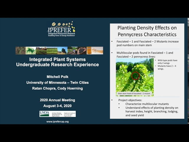 Mitchell Polk: IPREFER 2020 Integrated Plant Systems–Undergraduate Research Experience Presentation