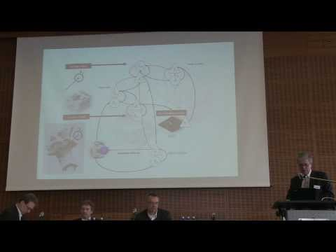 Consciousness and the Bayesian brain - 08 - Sandler Conference 2014