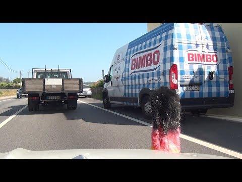 Modivas Vilar Mosteiró Vilar de Pinheiro N13 Portugal 22.5.2017 #1107