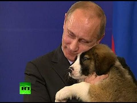 A Dog's Heart: Pet lover Putin needs name for fluffy puppy
