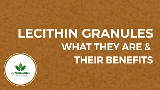 What Lecithin Granules are and their Benefits by Buy Organics Online