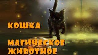 Кошка -  магическое животное