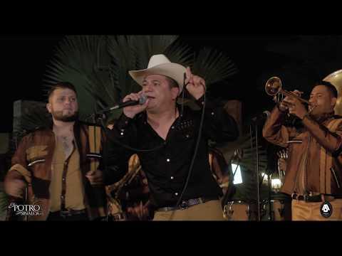 El Potro De Sinaloa - El Chamaco (En Vivo Corrido Inedito)