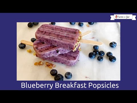 Low Carb Blueberry Yogurt Breakfast Popsicles - Easy low carb snack