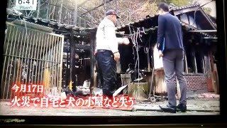 ブリーダー,ホワイトノエル火事,テレビ放送.