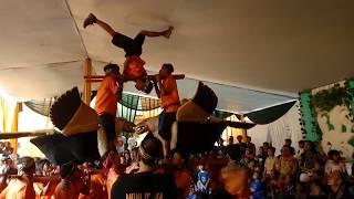 Download Video Kuda Renggong Bandung Jawa Barat Atraksi MP3 3GP MP4