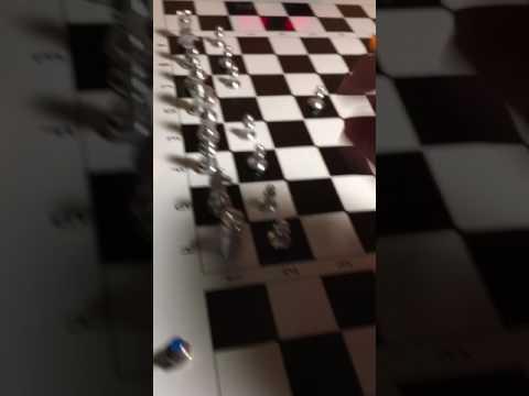 Schachroboter - Chess Buddy