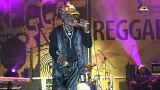 """LEE """"Scratch"""" PERRY""""Jah Live""""- Live @ Reggae On / Częstochowa 2012"""