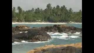 Шри Ланка  Золотой глобус 37 Sri Lanka(The World is yours- Этот Мир для нас! Sri Lanka В Шри Ланку только со Swiss Halley ! Со скидками от 20% до 70% ! Отдых,туризм,путешест..., 2013-11-17T14:53:05.000Z)