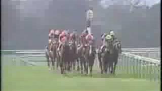 1995年ジャパンカップ - ランド