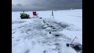 Ловля корюшки на Южной дамбе Финского залива