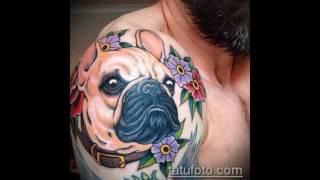 Значение тату бульдог - фото варианты готовых татуировок