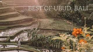 BEST PLACES TO VISIT IN UBUD, BALI