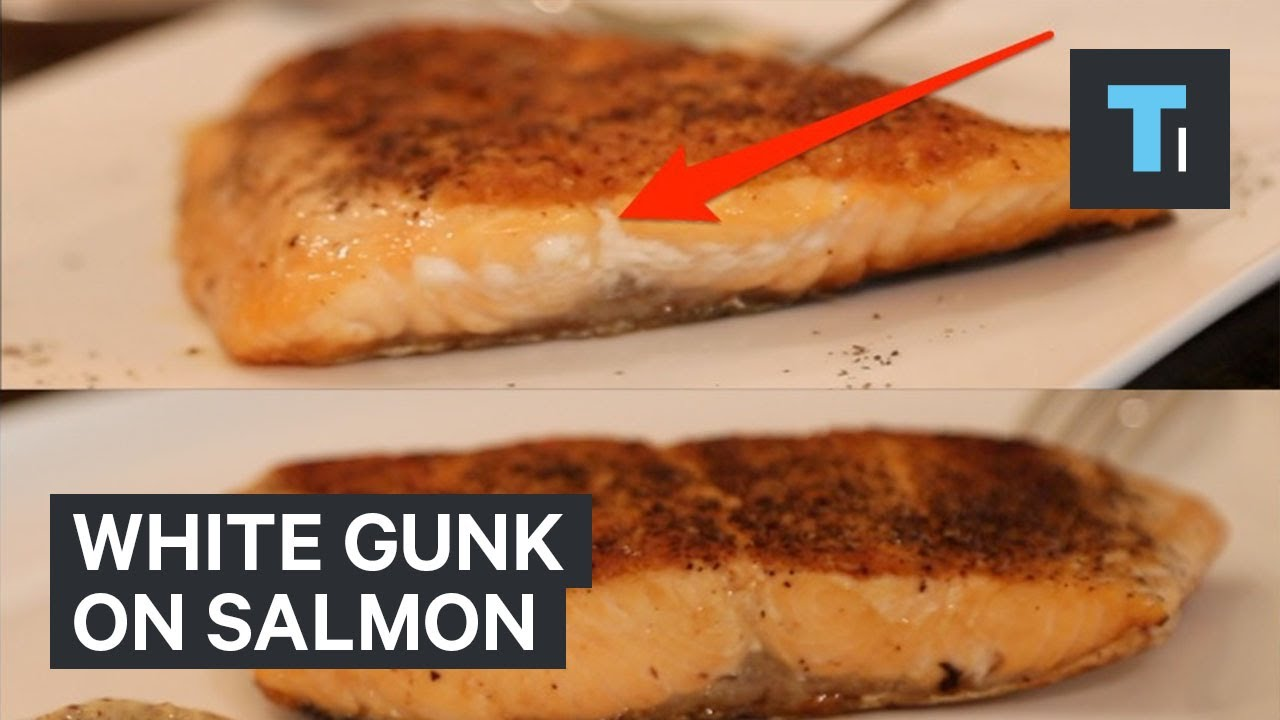 What That White Gunk On Your Salmon Actually Is And How To