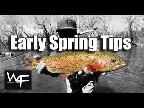 """W4F - Fly Fishing Tennessee and North Carolina """"Early Spring Tips"""""""