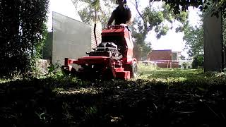 Overgrown lawn, Gravely 36