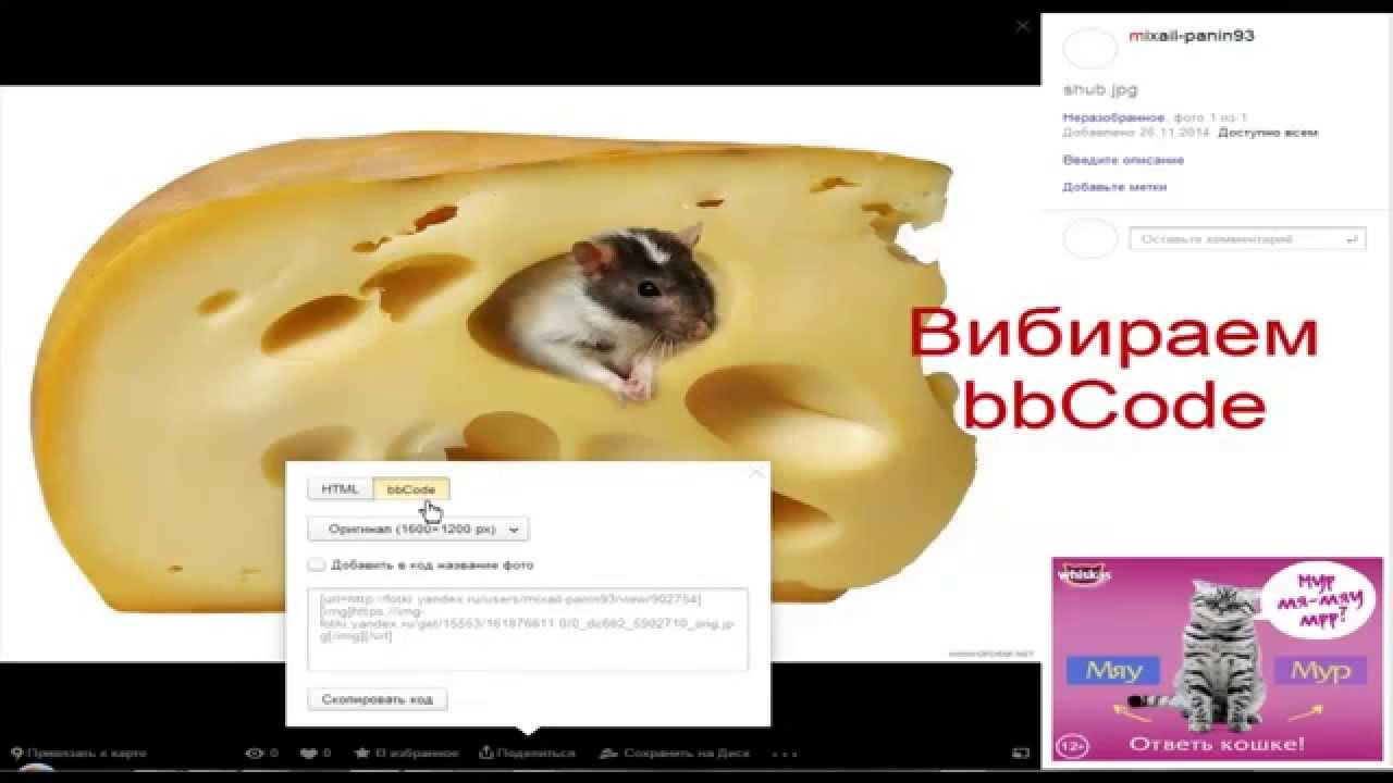 Как загрузить картинку на Яндекс Фото и вставить её на ...