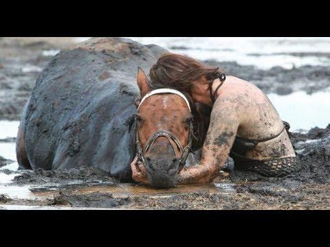 Por horas la mujer abraza a su caballo entonces el agricultor muestra como se ve un angel guardian