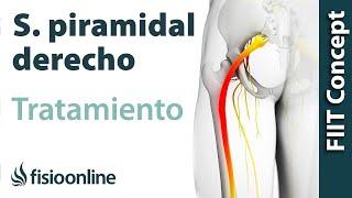 Lado derecho del el trasero en la dolor pierna y