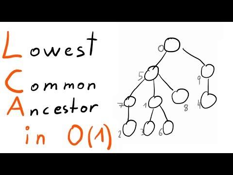 Lowest Common Ancestor Tutorial