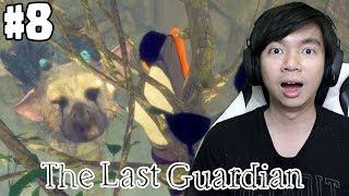 Trico Terluka - The Last Guardian Indonesia - #8