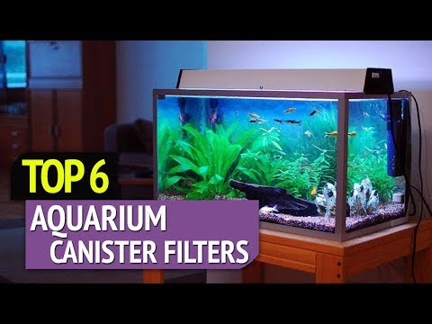 TOP 6: Best Aquarium Canister Filters