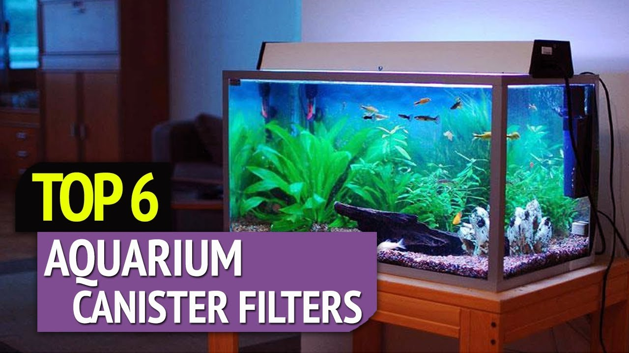 TOP 6: Best Aquarium Canister Filters - YouTube