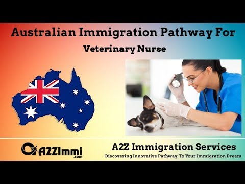 Veterinary Nurse | 2020 | PR / Immigration Requirements For Australia