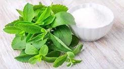 hqdefault - Diabetes And Stevia Sweetener