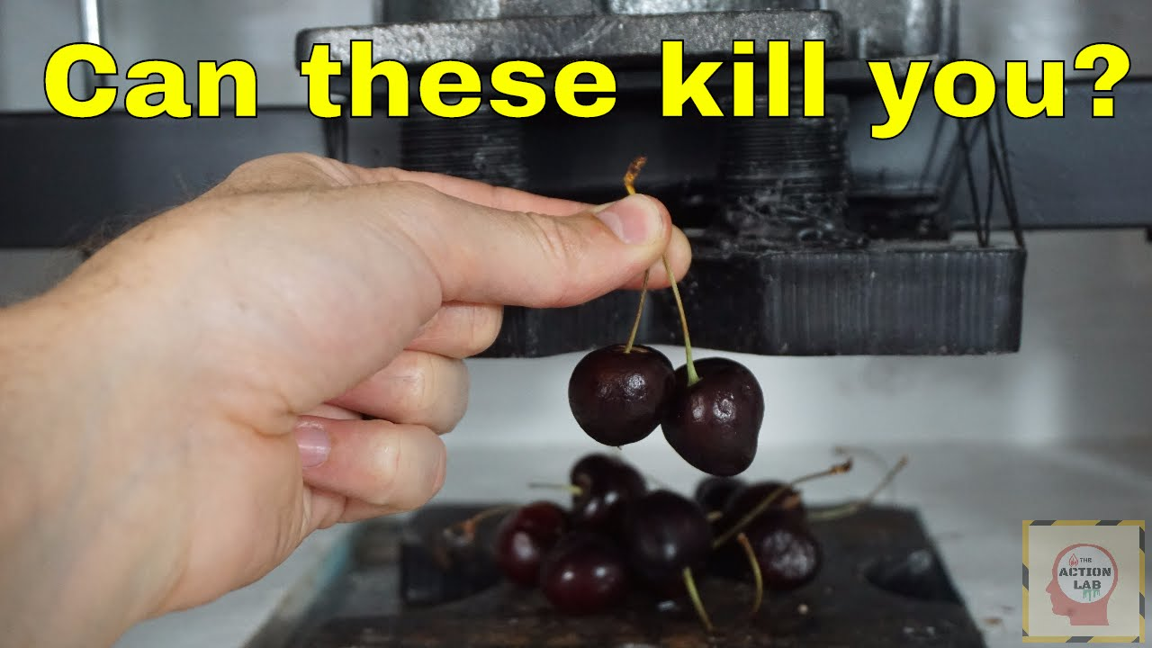 are cherry seeds poisonous