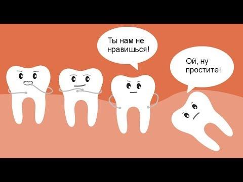 Зачем нужны зубы мудрости? Нужно ли удалять зуб мудрости? Вся правда о зубе мудрости.