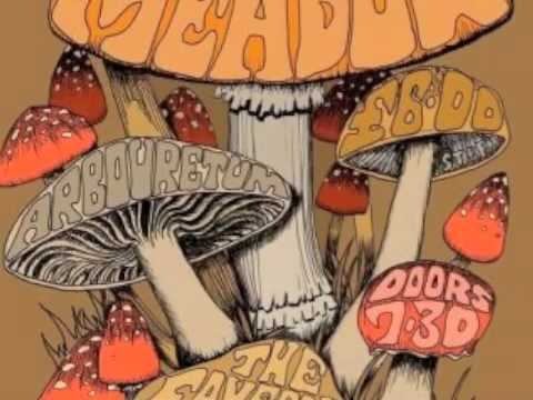 Dead Meadow :: Me and the Devil Blues