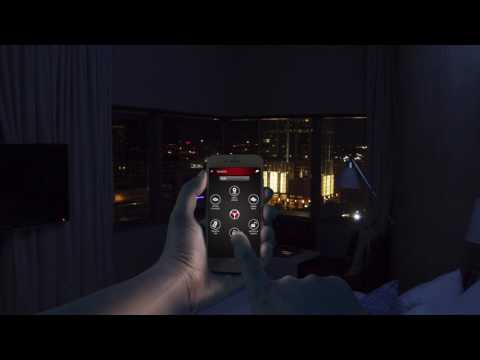 Detektor Interactive