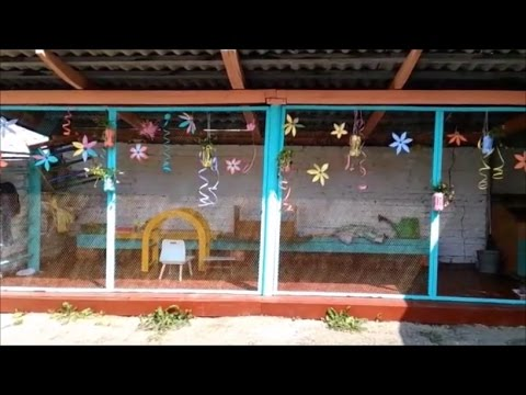 Оформление участка детского сада своими руками